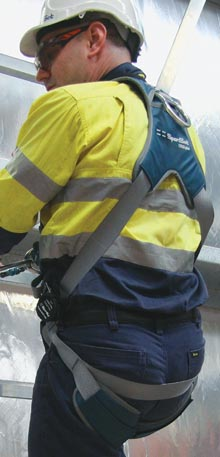 Harness Inspection Side Image