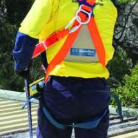 Safety Harnesses Side Image